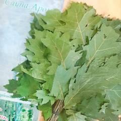 Купить комплект веников для бани сауны Украина. Магазин Сауна Арома