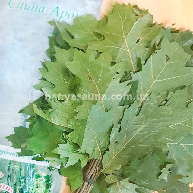 Купить дубовый свежий замороженный веник для бани сауны Украина. Магазин Сауна Арома